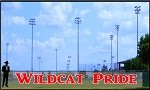 4' Wildcat Pride - 2 Colors