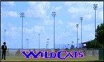4' Custom Wildcats Letters