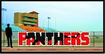 4' x 19' Panthers Letters with Silhouette