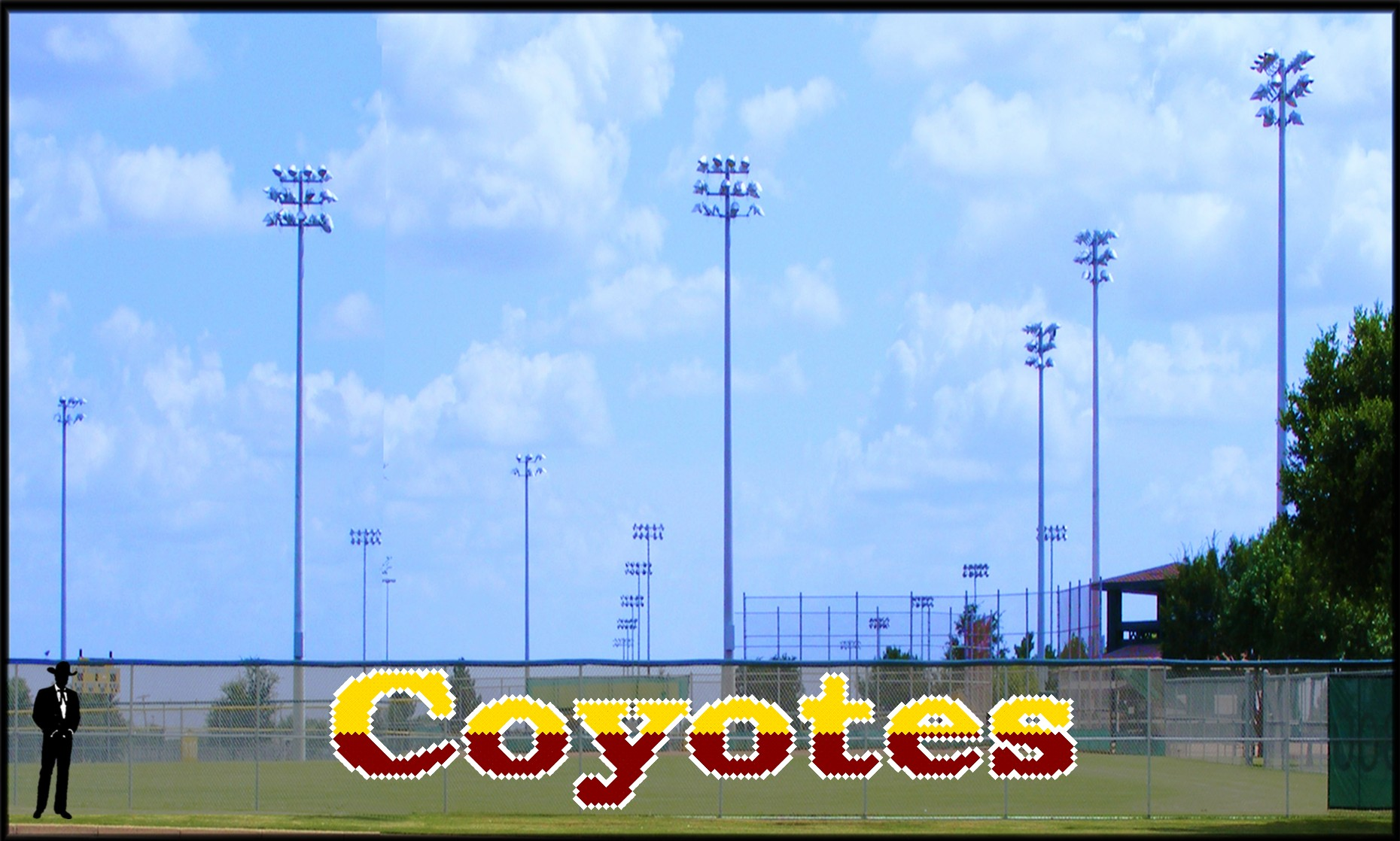 ' x 28 Two - Tone Coyotes