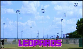 5' Block Leopards Letters