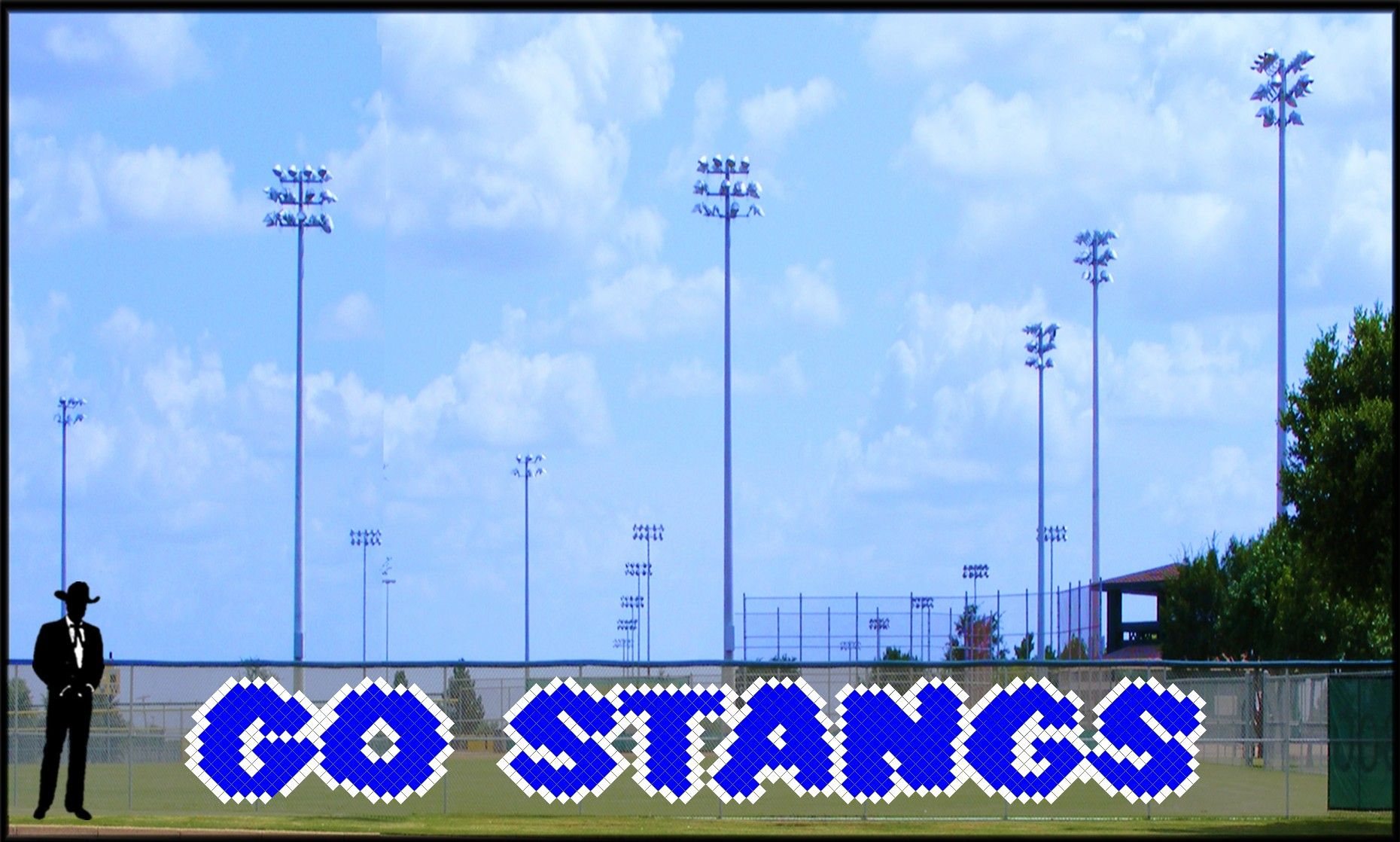 3' x 22' Go Stangs Letters