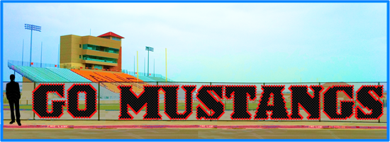 4' x 40' Go Mustangs - 2 Colors