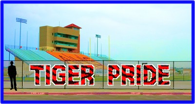 4' Tiger Pride Letters - Custom Design