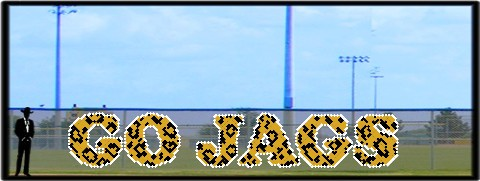 5' x 30' Go Jags - Spotted Letters