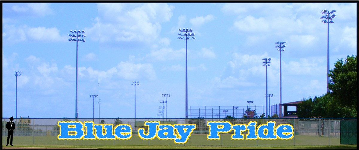 5' Blue Jay Pride - Lowercase 3 Colors