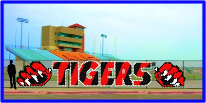 5.6' x 36' Tigers Letters with Claws