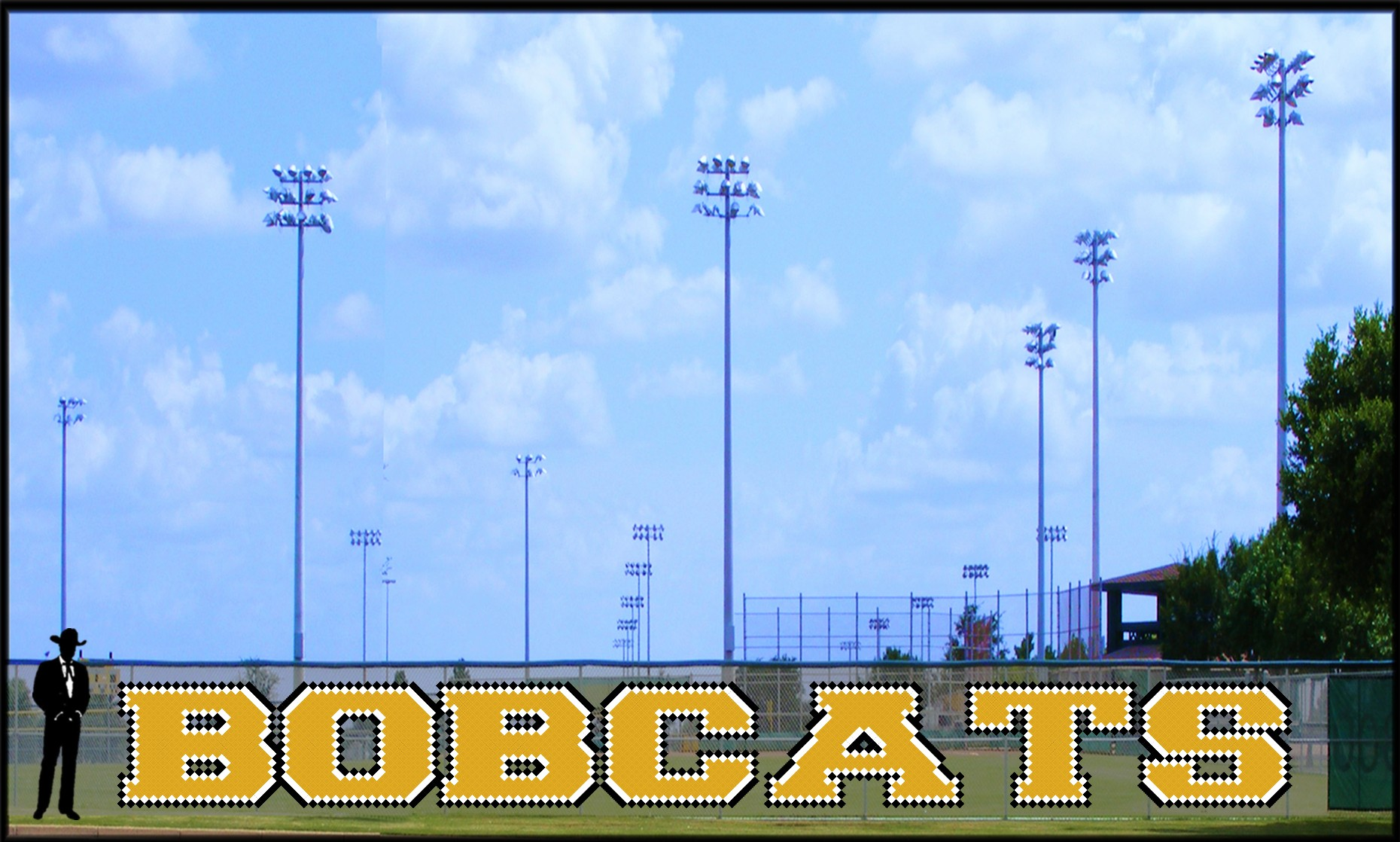 4' Bold Bobcats Letters