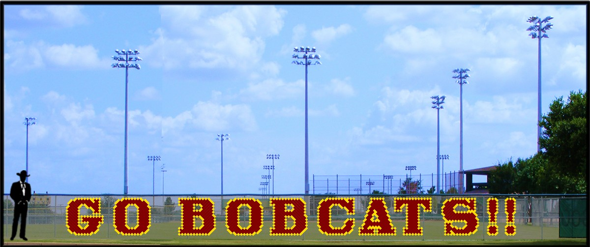 4' Go Bobcats - 2 Colors