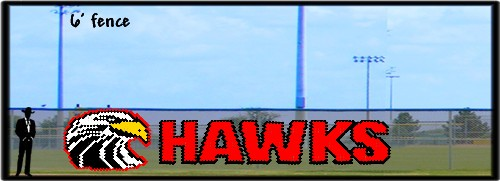 6' Hawk Head with Hawks Custom letters
