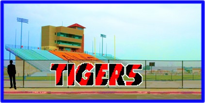 6' Tigers - 3 Colors