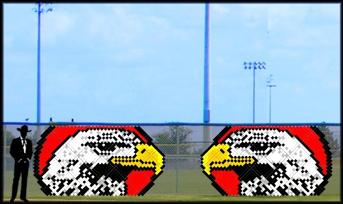 6' x 11' Falcon/Hawk with Red Background