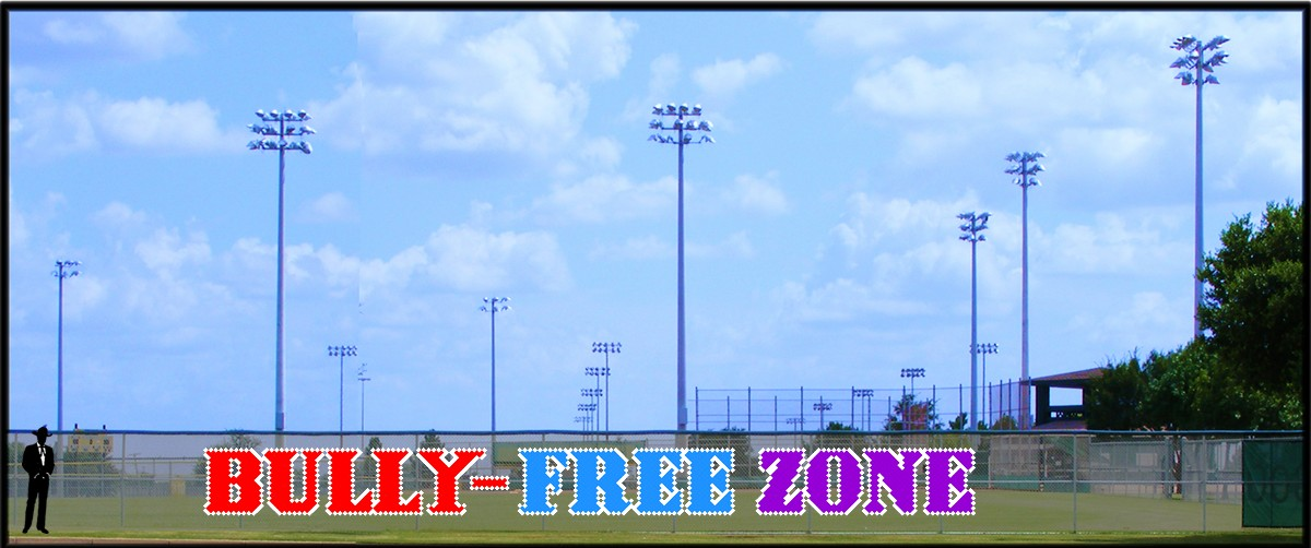 4' x 44' Bully-Free Zone Banner