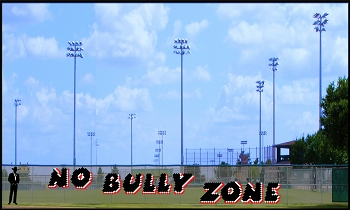 6' x 23 No Bully Zone