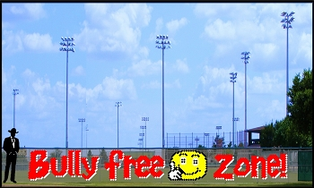4' x 33' Bully Free Zone with Smiley