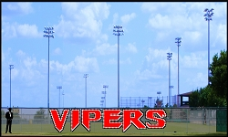 6' Vipers Custom Letters