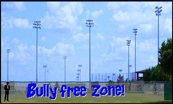 5' x 30' Bully Free Zone Letters