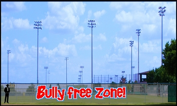 6' x 30 Bully Free Zone Letters - 3 Colors