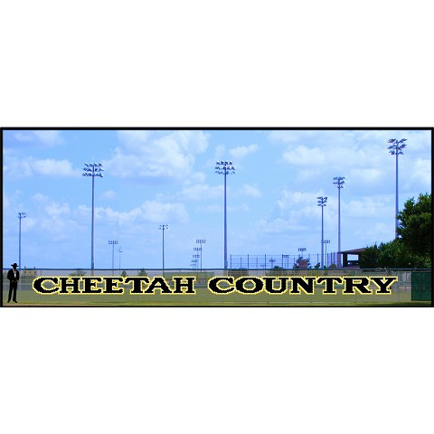 4' Cheetah Country Letters