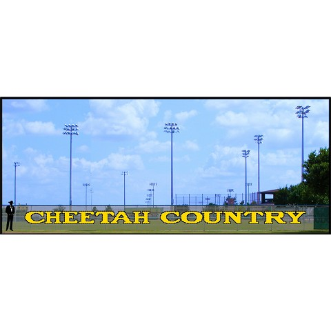 4' Cheetah Country Letters - 2 Colors