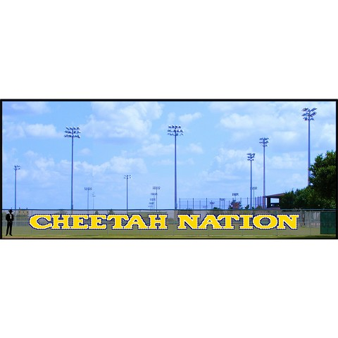 4' Cheetah Nation
