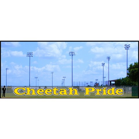 4' Cheetah Pride - Lowercase