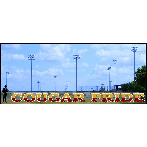 4' Two - Tone Cougar Pride