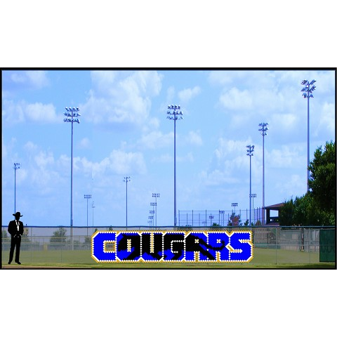 4.25' x 20 Cougars with Silhouette