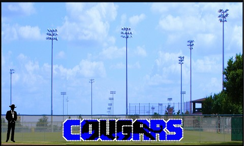 4' x 20 Cougars with Silhouette - No Outline