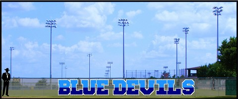 4' x 35 Two - Tone Blue Devils
