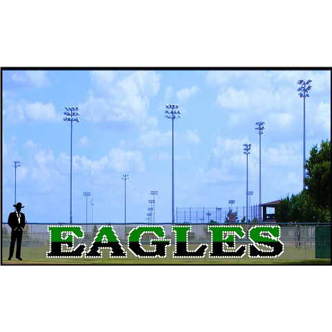 4' x 31' Two - Tone Eagles