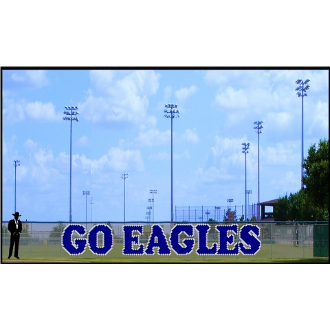 4.5' GO Eagles