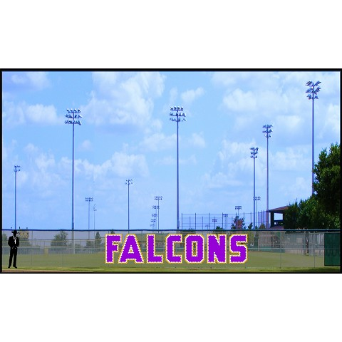 5.5' Tall Falcons
