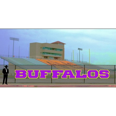 3.5' x 36' Buffalos Letters - 2 colors