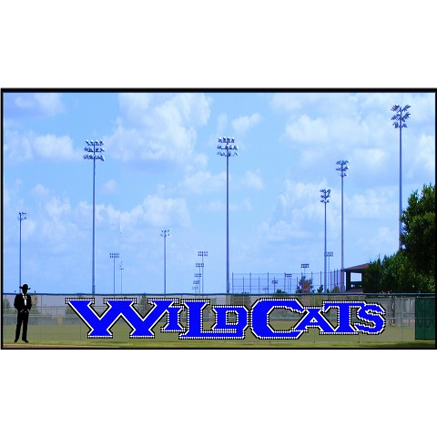 5' Custom Wildcats Letters