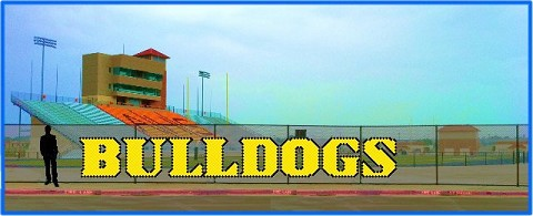4' x 27' Bulldogs Letters - 2 Colors