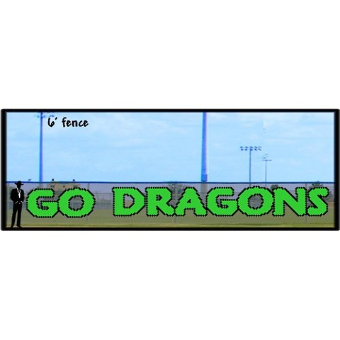 4' x 34' Custom Go Dragons Letters