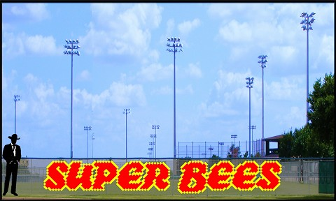 3' x 24' Super Bees Letters - 2 Colors