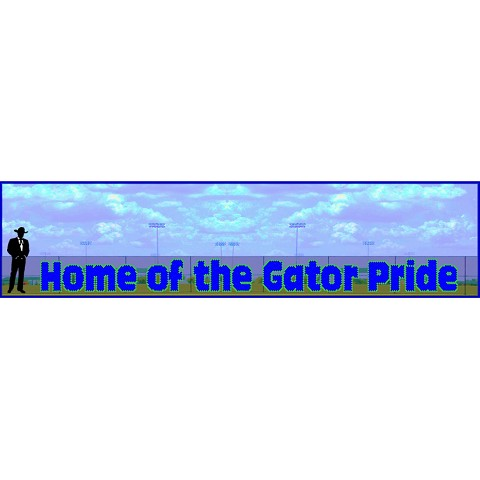 4.5' x 59' Home Of the Gator Pride
