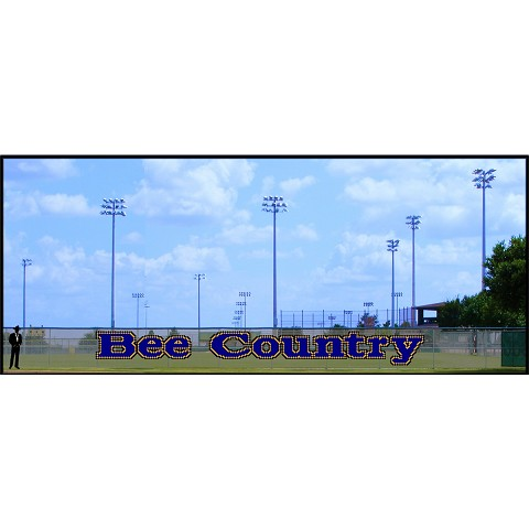 5' x 46' Bee Country - 3 Colors