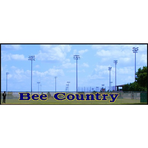 5' x 46' Bee Country - 2 Colors