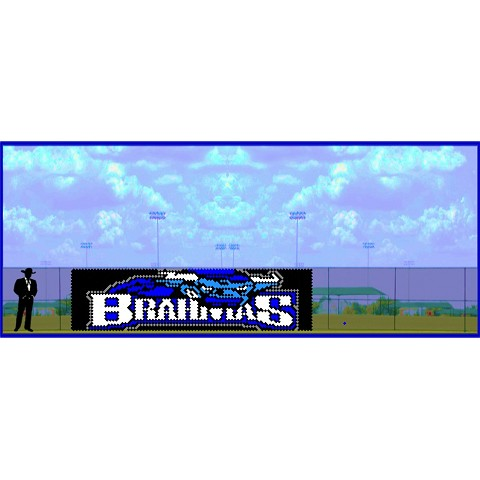 6' x 23' Brahmas Letters with Bull