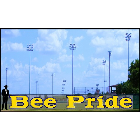 4' Bee Pride Letters - Lowercase 2 Colors