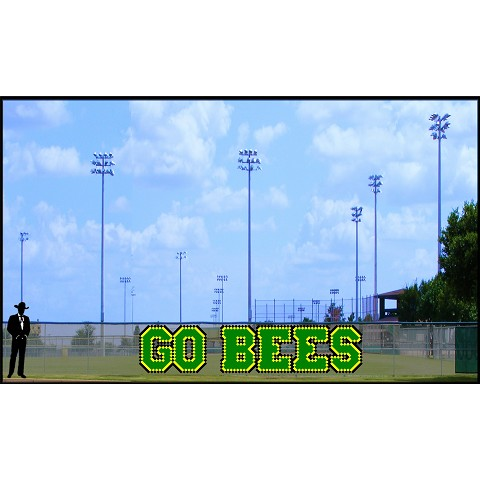 4.5' Go Bees - 3 Colors