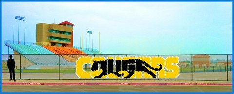5' x 19' Cougars Letters with Cougar Background