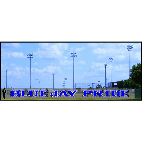 4' Blue Jay Pride - 3 Colors