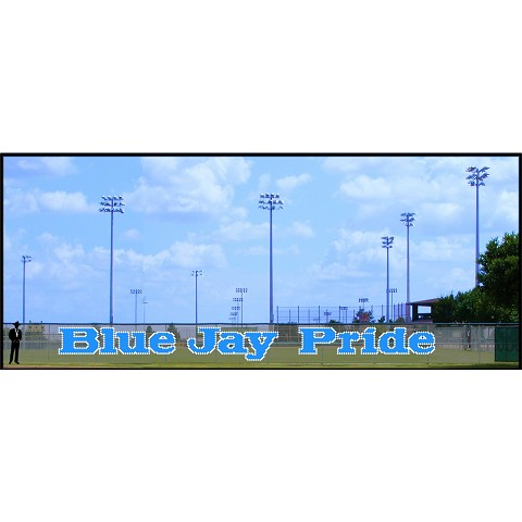 5' Blue Jay Pride - Lowercase 2 Colors