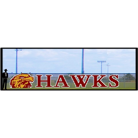 5' Hawk Head with Hawks Custom letters