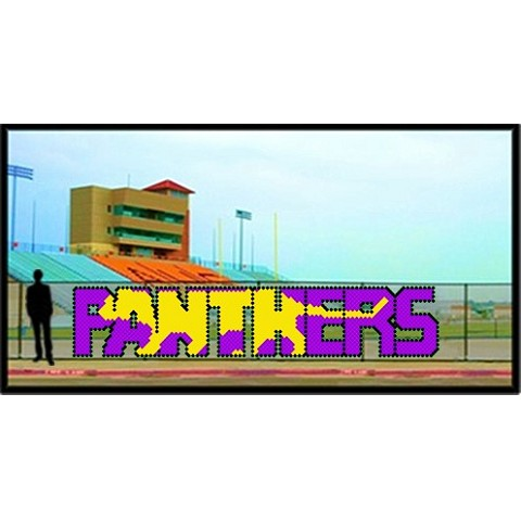 5' x 21' Panthers Letters with Silhouette