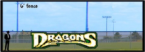 6' x 16' Dragons Custom Design